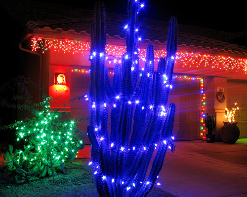 Holiday Lights in Arizona