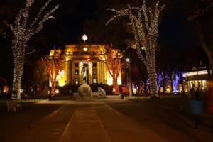 Christmas decoration Arizona 33