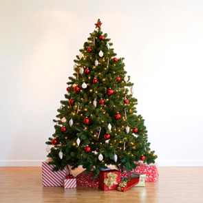 Christmas tree i stock DE