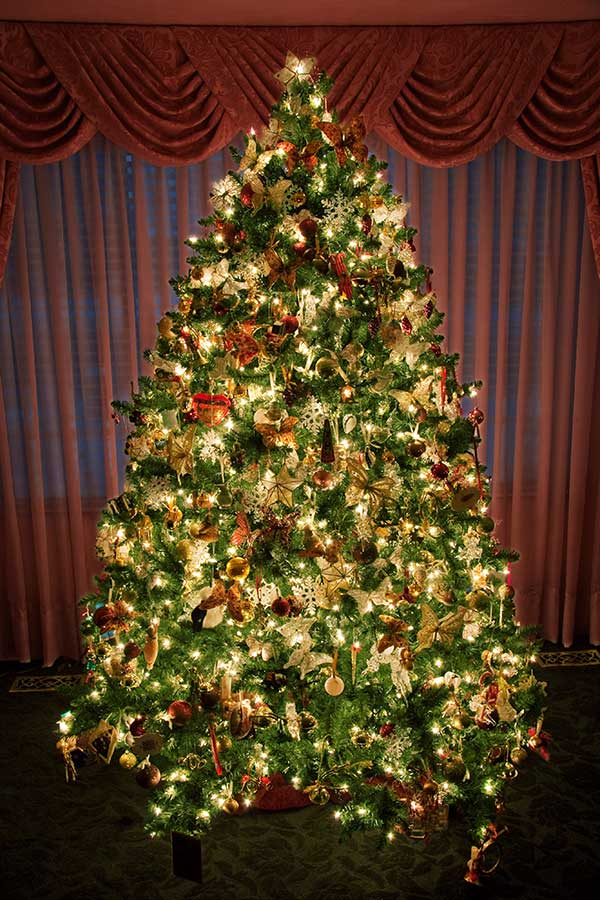 decorated christmas tree - Pictures Of Decorated Christmas Trees