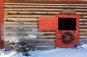 Holiday wreath hanging on red barn door Christmas tree Arkans