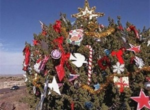 Humble tree captures spirit of Christmas large