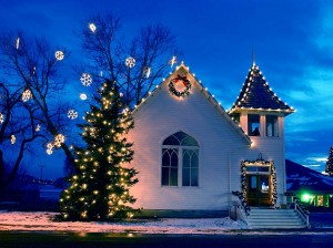 Professional Christmas Lighting Installation Single