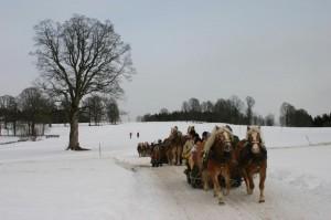 Sandburg sleigh ride