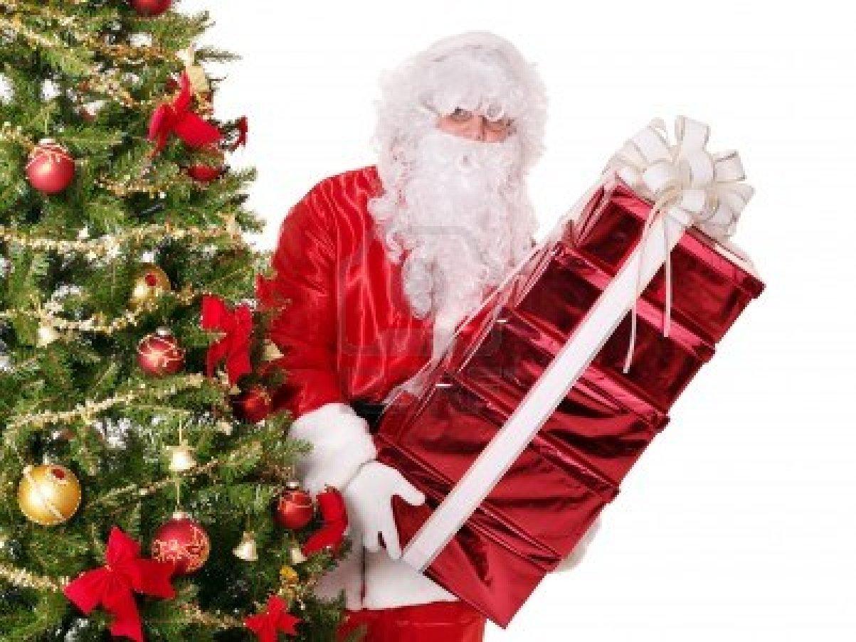 zoom - Santa Trees