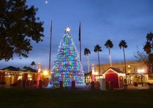 Tumbleweed Christmas Tree Chandler Arizona