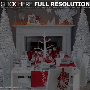 Christmas Party Decorating Ideas 2013 White n Red