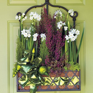 Hang a Paper White Basket  Greet guests with a bright arrangement of seasonal paperwhites, heather, juniper, and moss in a planter that hangs directly on your front door.
